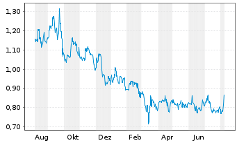 Chart Nine Dragons Paper Hldgs Ltd. - 1 Jahr