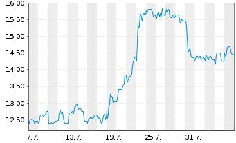 Chart GRAMMER AG - 1 Monat