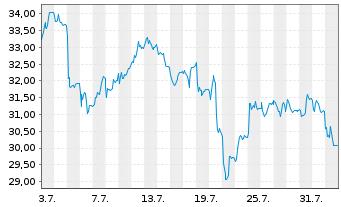 Chart Salzgitter AG - 1 Monat