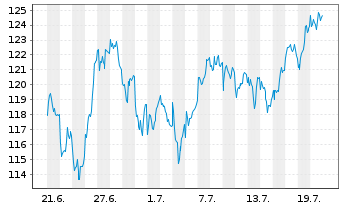 Chart Allianz RCM Wachstum Euroland - 1 Monat