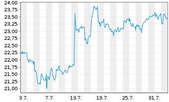 Chart Wacker Neuson SE - 1 Monat
