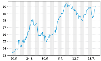 Chart Schwab Strateg.Tr.-US LC G.ETF - 1 Monat