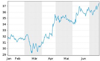 Chart Liberty Media Corp. Reg.Sh. C Braves Grp DL -,01 - 6 Monate