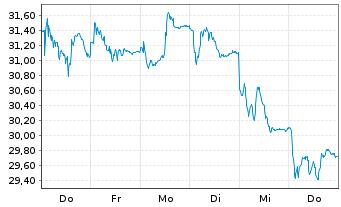 Chart Salzgitter AG - 1 Woche